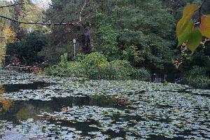 道庁の左の池