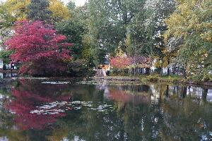 道庁の右側の池