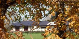 百合が原の家の風景