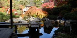 日本庭園ー影