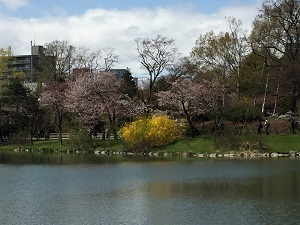 中島公園札幌